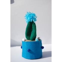 Pianta Grassa Con fiore azzurro uncinetto